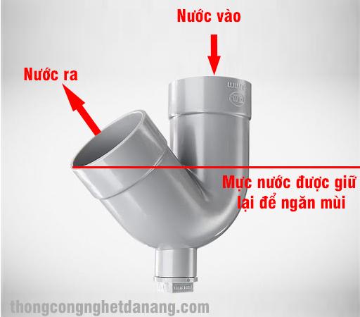 con-tho-chong-hoi
